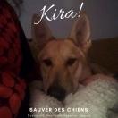Kira!