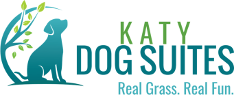KDS-logo-4-tagline-webv2